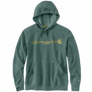 Carhartt Force® Delmont Hoodie