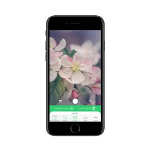 App - PlantSnap