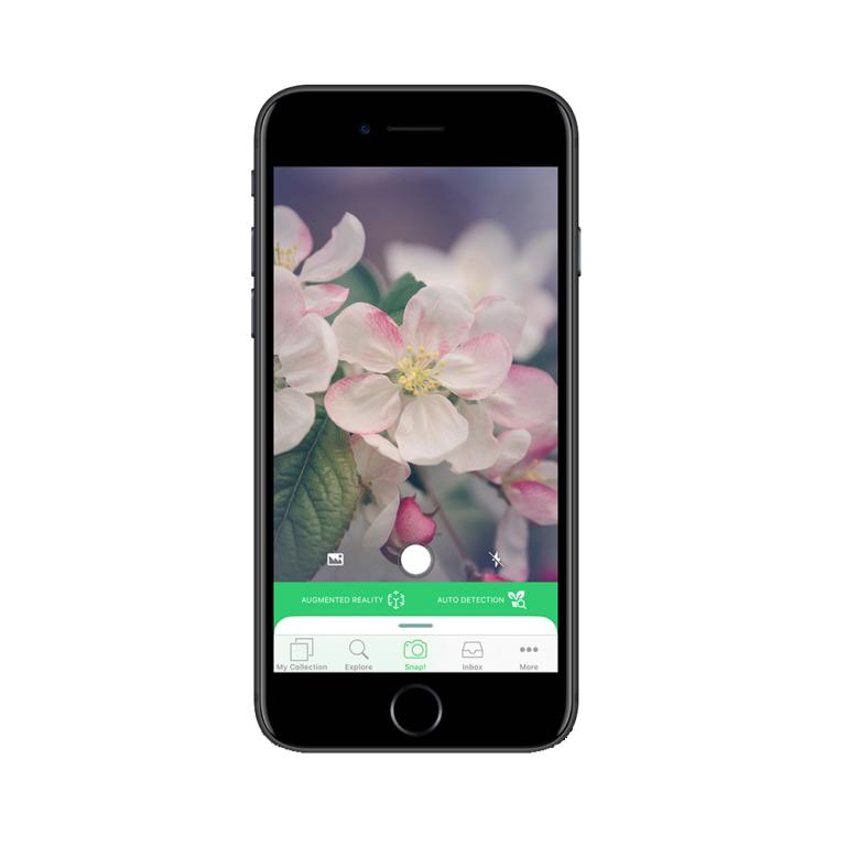 App – PlantSnap
