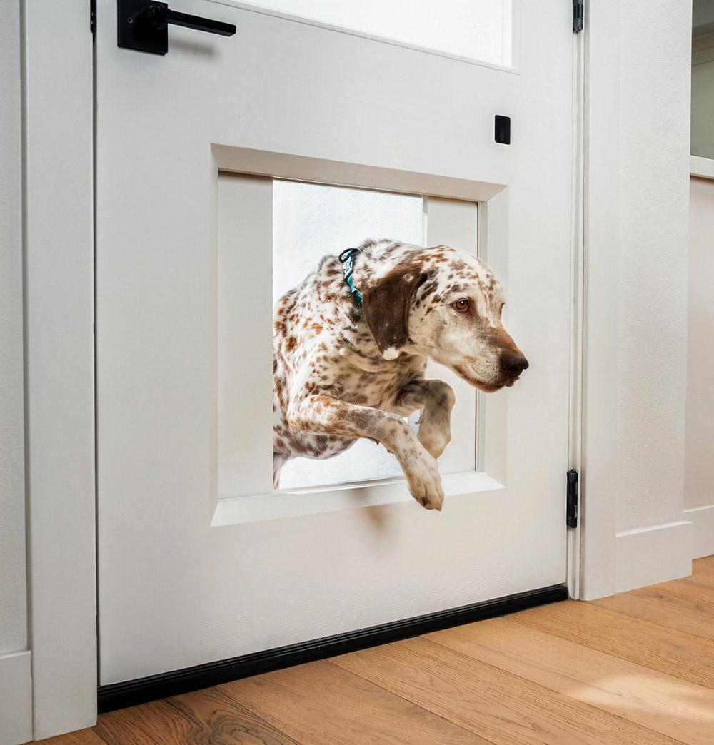 Chamberlin – myQ Pet Portal