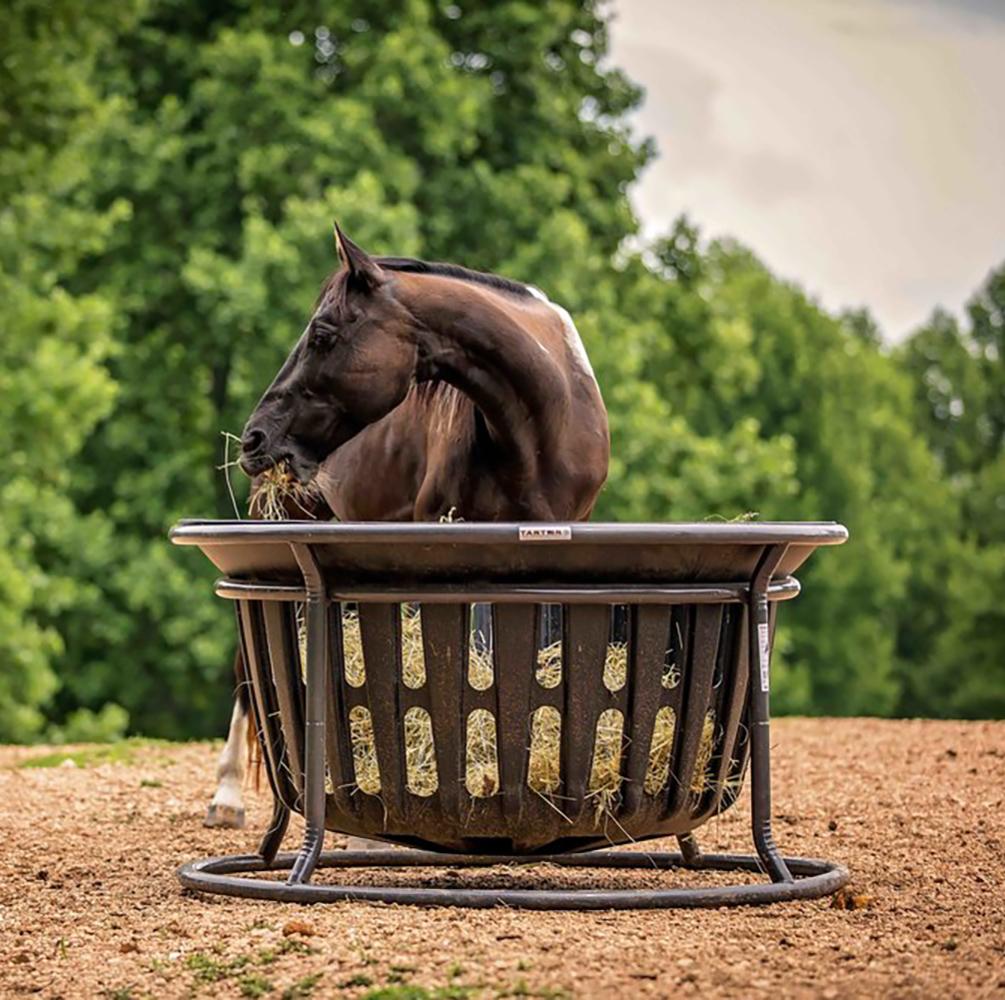 Tarter – Equine Hay Basket