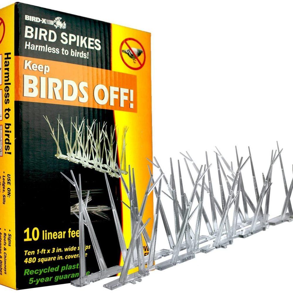 Bird-X - Polycarbonate Bird Spikes